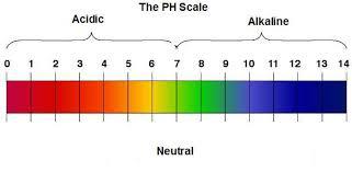 tabella ph con le scale dei vari valori